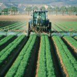 Glyphosat - 除草剤 ランドアップの発癌性問題 | Pfadfinder24