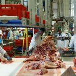 コロナ集団感染 が食肉加工工場で発生するのは何故?